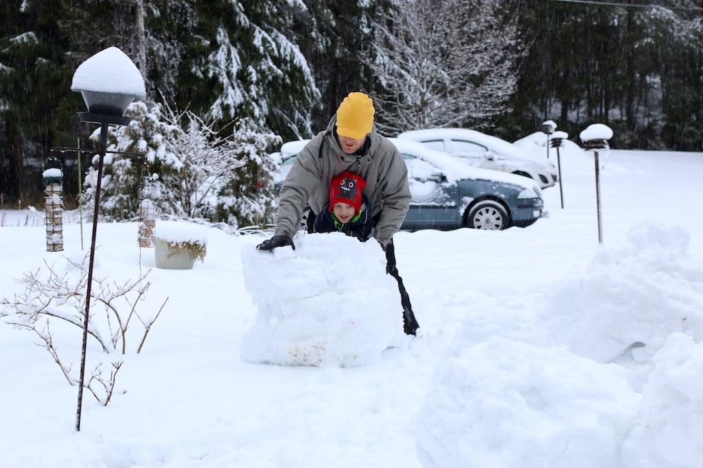 rulla snöboll