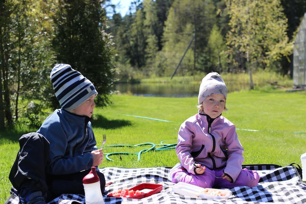 picnic på gården