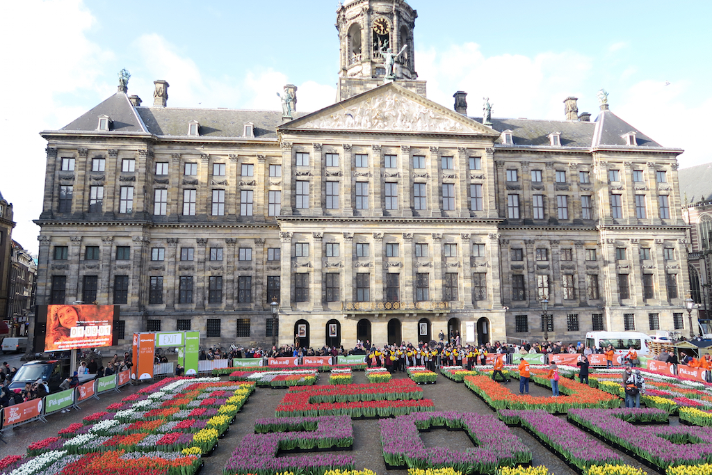 dam square amsterdam tulips