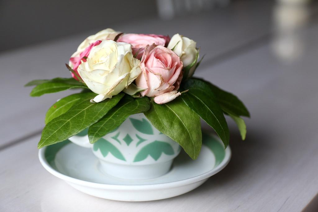 rosor i kopp